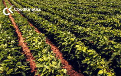 PowerBI Reporting for Azure Consumption: Agriculture